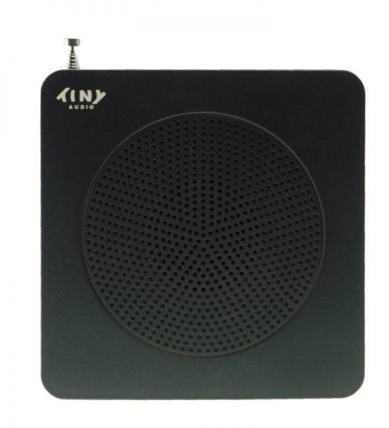 TinyAudio Travel DAB+ radio zwart